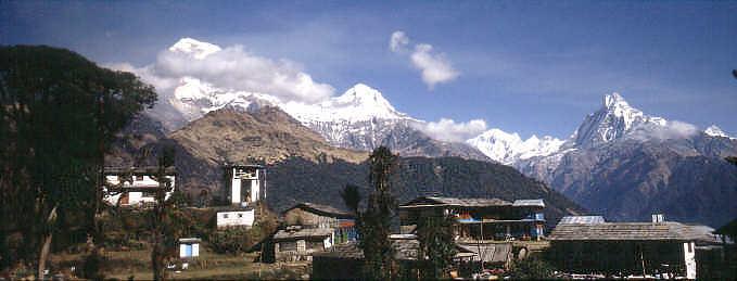 http://nepal-dia.de/N989-333_Tadapani_jpeg_230.jpg